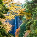 震動の滝の雄滝