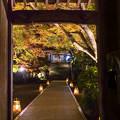 大興善寺 ライトアップ 2