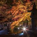 富貴寺 ライトアップ 4