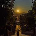 宮地嶽神社 光の道 2