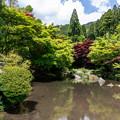 環境芸術の森 新緑 5