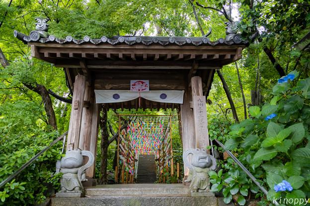 Photos: 如意輪寺 風鈴