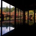 Photos: 環境芸術の森