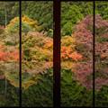Photos: 環境芸術の森 3