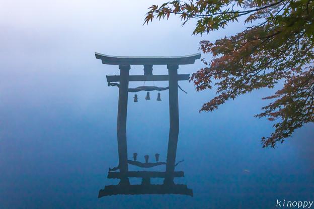 湯布院 金鱗湖 秋景色