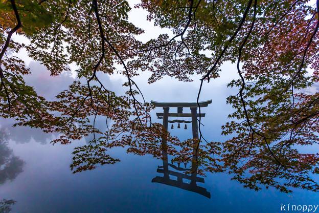 湯布院 金鱗湖 秋景色 2