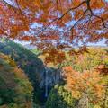 福貴野の滝 3