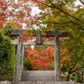 仁比山神社 紅葉