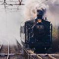 Photos: 鬼滅の刃 無限列車