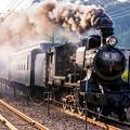 Photos: 鬼滅の刃 無限列車 2