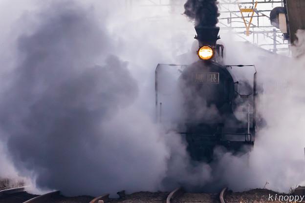 Photos: 鬼滅の刃 SL無限列車 4