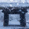 秋月城跡 雪景色 3