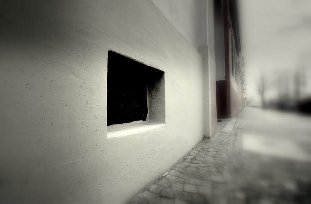 半地下の窓