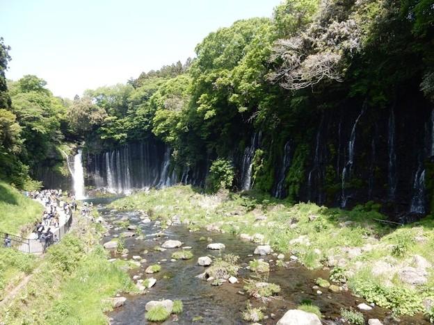 写真: 白糸の滝全景?
