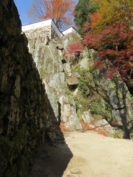 本丸の壁と石組み