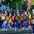 写真: 夏之祭典 - 東北盛岡三颯舞祭
