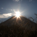 写真: ダイヤモンド富士と光るススキ…秋ヴァージョン