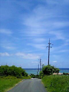 島の風。。。