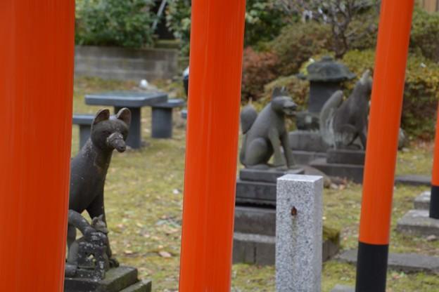 与次郎稲荷神社2