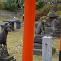 Photos: 与次郎稲荷神社2