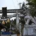 Photos: 大平山三吉神社2