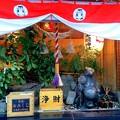 Photos: 本陣狸大明神社