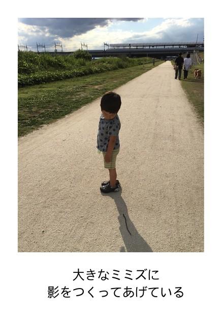 Photos: 初夏の日