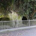 写真: 史跡西郷隆盛洞窟