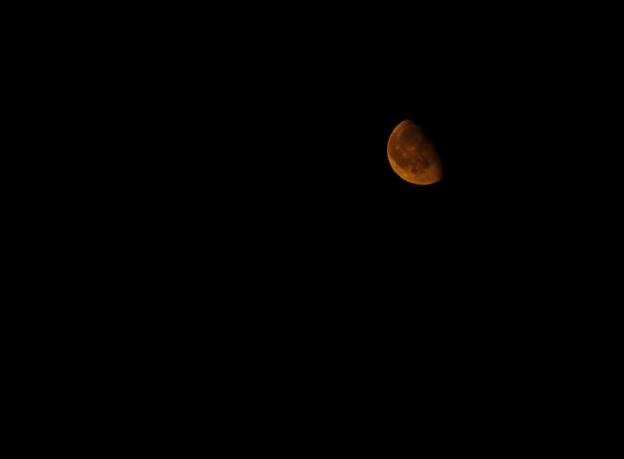 Photos: 銅の月