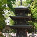 Photos: 三重の塔