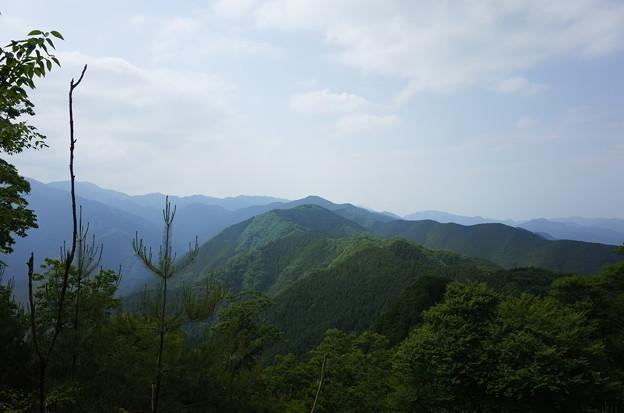 初夏の高水三山2@東京都青梅市(2018