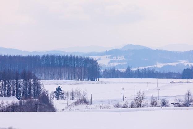 車窓から見た冬北海道の大地 2