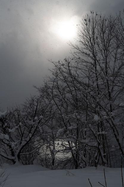 雪の雲間に