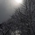 Photos: 雪の雲間に