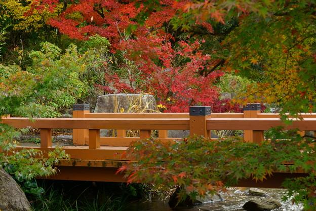 香川用水記念公園