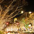Photos: aoyamaminami