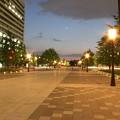 Photos: 都道404号線からの皇居方面  夜景 5月1日