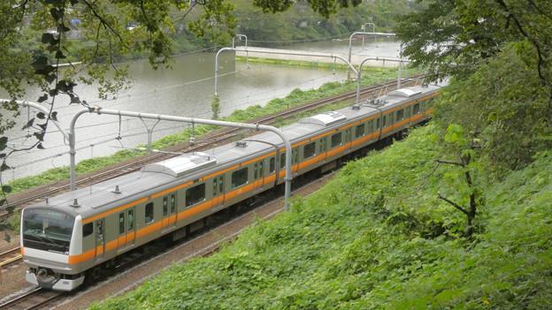 緑の茂み越しに見えた電車