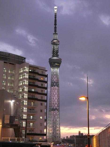 「ゆうグレー」の下の東京スカイツリー