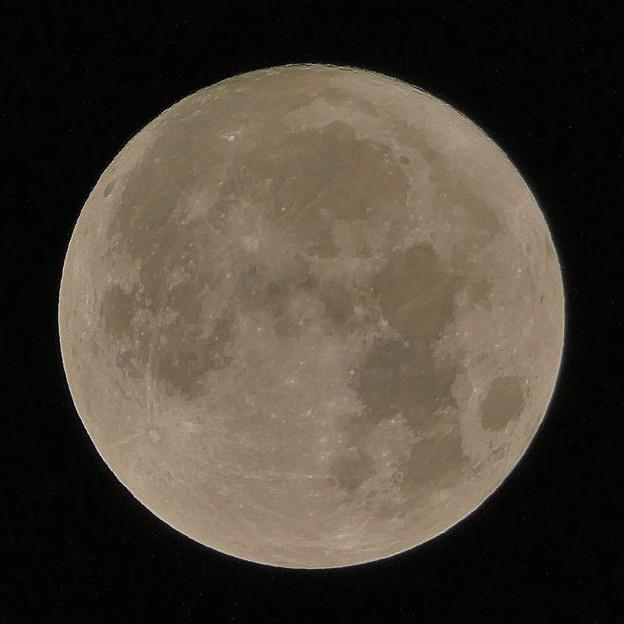 「10月2日」になったばかりでのお月様