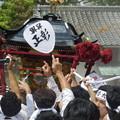 Photos: 焼津荒まつり