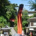写真: 赤い鳥居と赤い橋