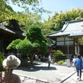 写真: 報国寺