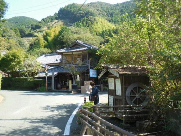 里山の小路