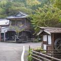 Photos: 里山の小路