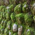 苔生す石垣