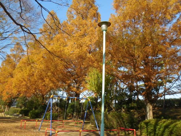昼下がりの公園