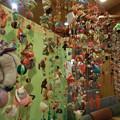 Photos: 雛の吊るし飾り
