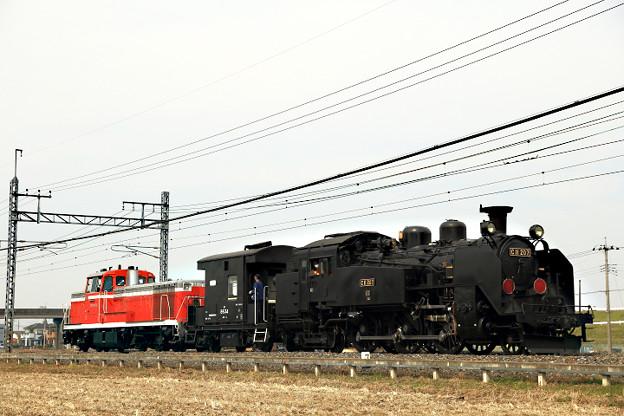 AN1V2036