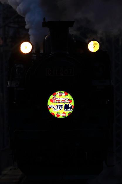 SL大樹 Strawberry Locomotive 4